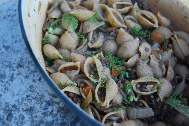 lentil bolog shells
